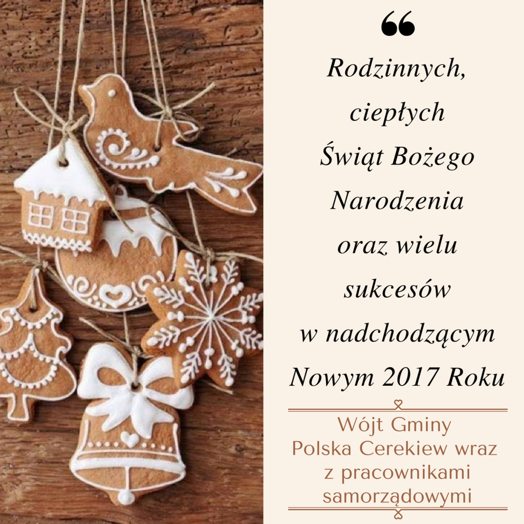 Sending you warmest wishes for a joyful holiday season and a prosperous new year-2.png