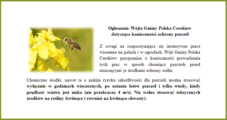 pszczoly.png