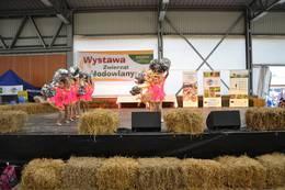 Galeria Agrofestiwal